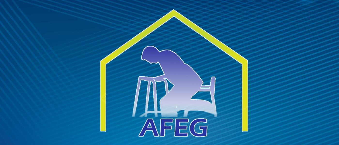 Banner AFEG